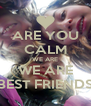 ARE YOU CALM WE ARE WE ARE BEST FRIENDS - Personalised Poster A4 size