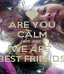 ARE YOU CALM WE ARE WE ARE' BEST FRIENDS - Personalised Poster A4 size
