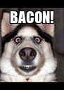 BACON!  - Personalised Poster A4 size