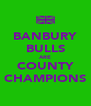 BANBURY BULLS ARE COUNTY CHAMPIONS - Personalised Poster A4 size