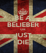 BE A BELIEBER OR JUST DIE - Personalised Poster A4 size