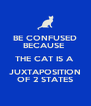 BE CONFUSED BECAUSE  THE CAT IS A  JUXTAPOSITION OF 2 STATES - Personalised Poster A4 size