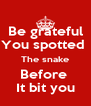 Be grateful You spotted  The snake Before  It bit you - Personalised Poster A4 size