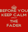 BEFORE YOU KEEP CALM DROP THE FADER - Personalised Poster A4 size
