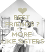 BEST  FRIENDS ? MORE  MORE  LIKE SISTERS - Personalised Poster A4 size