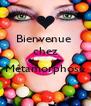 Bienvenue  chez  Métamorphose         - Personalised Poster A4 size