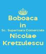 Boboaca in Sc. Superioara Comerciala Nicolae Kretzulescu - Personalised Poster A4 size