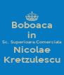 Boboaca in Sc. Superioara.Comerciala Nicolae Kretzulescu - Personalised Poster A4 size