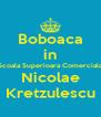 Boboaca in Scoala Superioara Comerciala Nicolae Kretzulescu - Personalised Poster A4 size