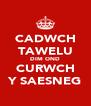 CADWCH TAWELU DIM OND CURWCH Y SAESNEG - Personalised Poster A4 size