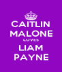 CAITLIN MALONE LOVES LIAM PAYNE - Personalised Poster A4 size
