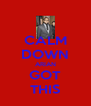 CALM DOWN ARIAN GOT THIS - Personalised Poster A4 size