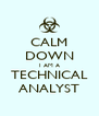 CALM DOWN I AM A TECHNICAL ANALYST - Personalised Poster A4 size