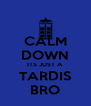 CALM DOWN ITS JUST A TARDIS BRO - Personalised Poster A4 size