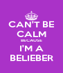 CAN'T BE CALM BECAUSE I'M A BELIEBER - Personalised Poster A4 size