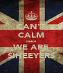 CAN'T CALM cause WE ARE SIHEEYERS - Personalised Poster A4 size
