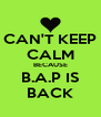 CAN'T KEEP CALM BECAUSE B.A.P IS BACK - Personalised Poster A4 size
