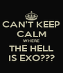CAN'T KEEP CALM WHERE THE HELL IS EXO??? - Personalised Poster A4 size