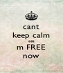 cant keep calm coz m FREE now - Personalised Poster A4 size