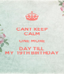 CANT KEEP CALM ONE MORE DAY TILL MY  19TH BIRTHDAY - Personalised Poster A4 size