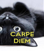CARPE DIEM - Personalised Poster A4 size