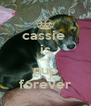 cassie  is my pup forever - Personalised Poster A4 size