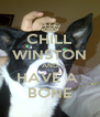CHILL WINSTON AND HAVE A  BONE - Personalised Poster A4 size