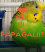 CUI II PLAC PAPAGALII?  - Personalised Poster A4 size