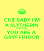 CUZ BABY I'M A SLYTHERIN AND GIRL YOU ARE A GRYFFINDOR - Personalised Poster A4 size