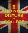 DO NOT DISTURB IN COLLEGE  - Personalised Poster A4 size