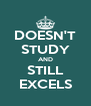 DOESN'T STUDY AND STILL EXCELS - Personalised Poster A4 size