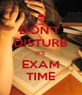 DON'T  DISTURB IT'S  EXAM TIME - Personalised Poster A4 size
