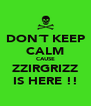 DON´T KEEP CALM CAUSE ZZIRGRIZZ IS HERE !! - Personalised Poster A4 size