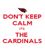 DON'T KEEP CALM IT'S  THE  CARDINALS - Personalised Poster A4 size