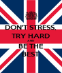 DON'T STRESS, TRY HARD AND BE THE BEST - Personalised Poster A4 size