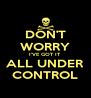 DON'T WORRY I'VE GOT IT ALL UNDER CONTROL - Personalised Poster A4 size
