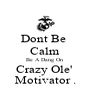 Dont Be  Calm Be A Dang On  Crazy Ole'  Motivator . - Personalised Poster A4 size