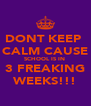 DONT KEEP  CALM CAUSE SCHOOL IS IN  3 FREAKING WEEKS!!! - Personalised Poster A4 size