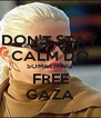 DON'T STAY CALM DO SOMETHING  FREE GAZA - Personalised Poster A4 size