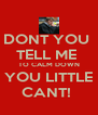 DONT YOU  TELL ME  TO CALM DOWN YOU LITTLE CANT!  - Personalised Poster A4 size
