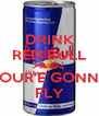 DRINK RED BULL AND YOUR'E GONNA FLY - Personalised Poster A4 size