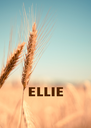 ELLIE  - Personalised Poster A4 size