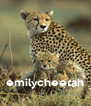 emilycheetah - Personalised Poster A4 size
