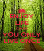 ENJOY LIFE 'CAUSE YOU ONLY LIVE ONCE - Personalised Poster A4 size