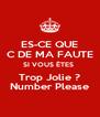 ES-CE QUE C DE MA FAUTE SI VOUS ÊTES  Trop Jolie ? Number Please - Personalised Poster A4 size