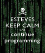 ESTEVES KEEP CALM and continue programming - Personalised Poster A4 size