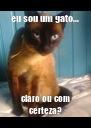 eu sou um gato... claro ou com certeza? - Personalised Poster A4 size