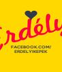 FACEBOOK.COM/ ERDELYIKEPEK - Personalised Poster A4 size