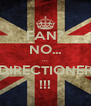FAN? NO... ... DIRECTIONER !!! - Personalised Poster A4 size