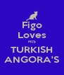Figo Loves HIS TURKISH ANGORA'S - Personalised Poster A4 size